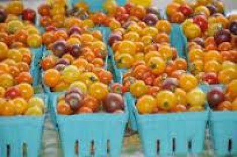 SHARE and Nice Roots Farm are Celebrating National Farmer's Market Week