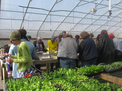 Nice Roots Farm holds first garden workshop of 2014